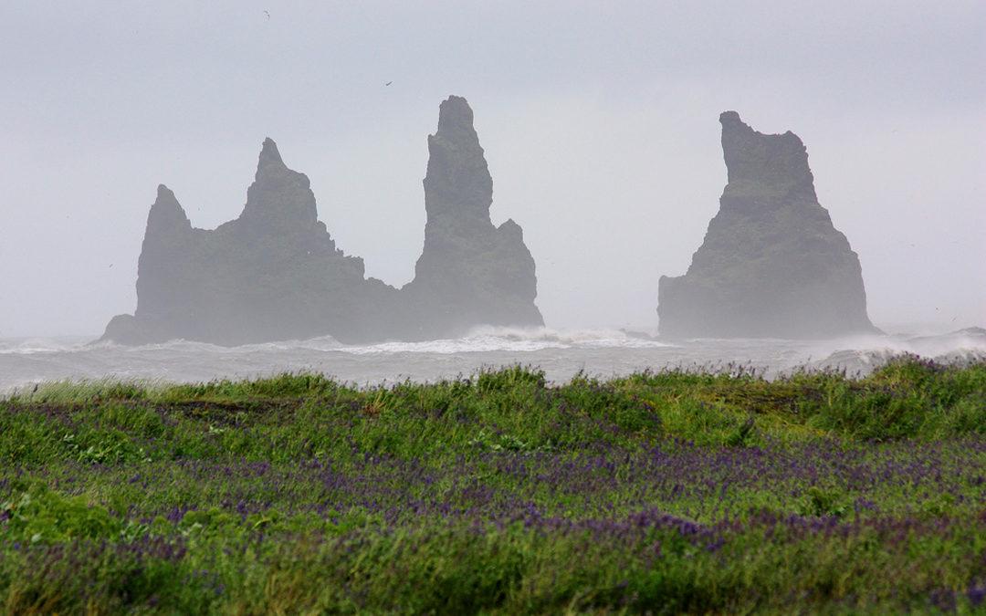 Vik i Myrdal – Reynisdrangar, Island