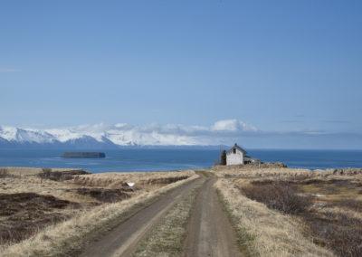 Genießen Sie die isländische Landschaft