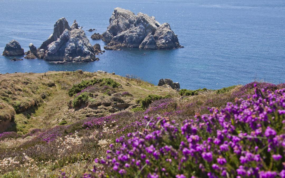 Reisebericht Channel Islands