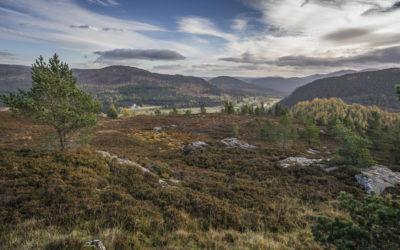 Länder – Menschen – Abenteuer: Cairngorms – Wo Schottland wild und rau ist