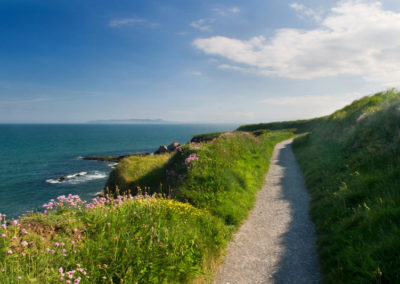 Küstenpfad bei Dublin von Donabate nach Portrane