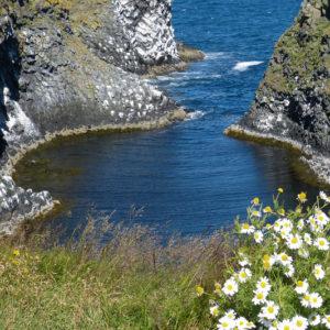 Busrundreise Island Snaefellsnes