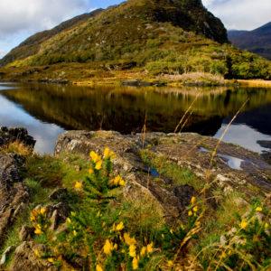 Busreisen Irland Killarney Lakes
