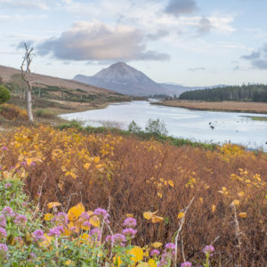 Busreisen Irland Mount Errigal Northern Headlands Donegal