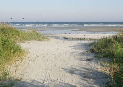 Strand im Norden von Dänemark