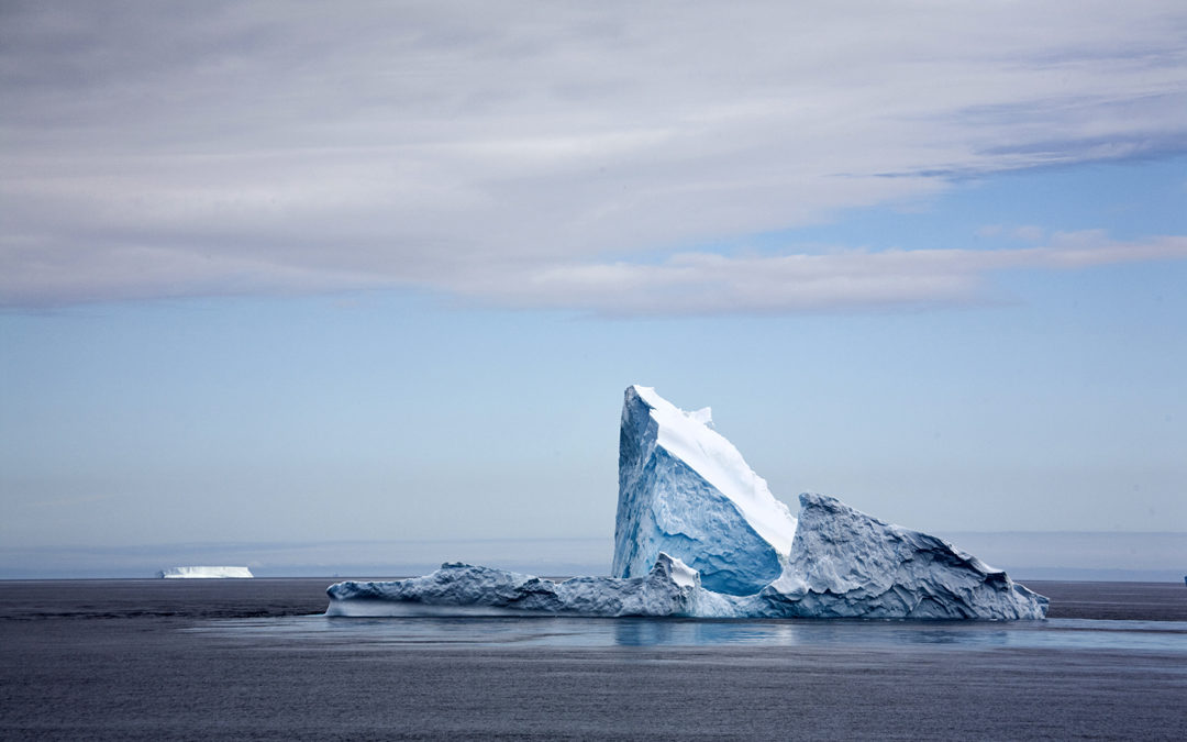 Entdeckungsreisen ans Ende der Welt: Antarktis und Falkland-Inseln