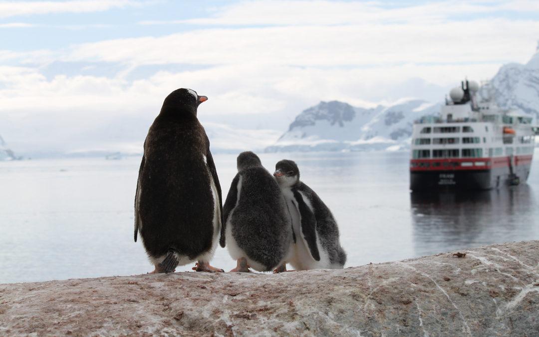 Expeditions-Seereise Antarktis
