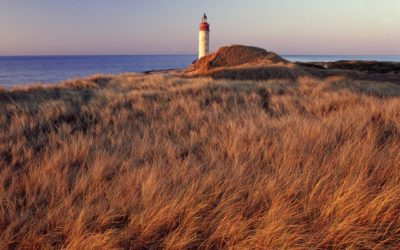 """Autorundreise """"Dänemarks Inselwelten"""""""