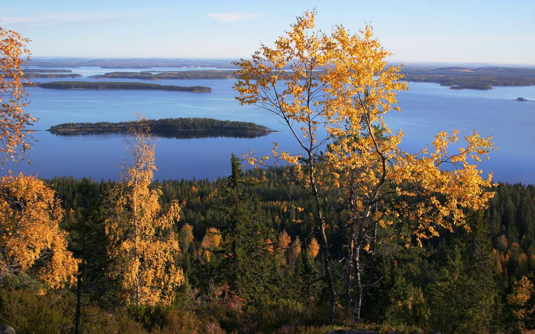 """Autorundreise """"Die Seen Finnlands"""""""