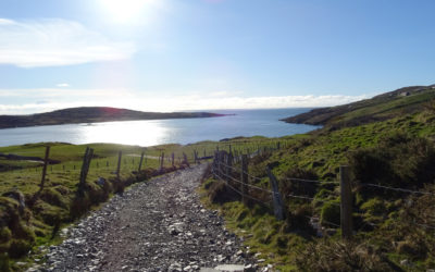 Spaziergang zum Clifden Castle