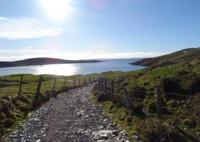 An Irlands Küste bei Clifden
