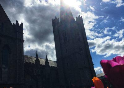 MaVoya Exclusiv Reise Irland Dublin St Patricks Cathedral