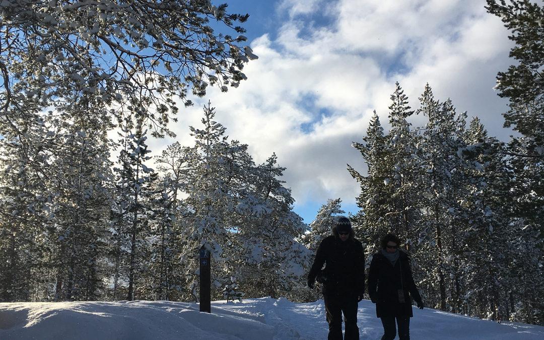 Exclusiv Reise nach Finnland: Winterspaziergang