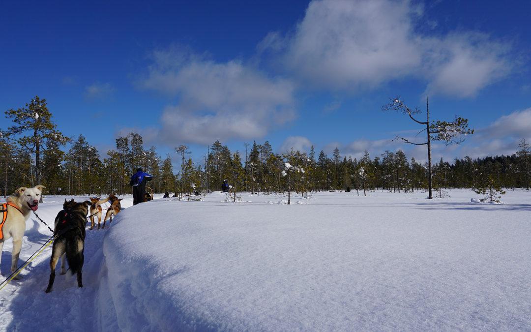 Aline & Andreas' Finnland Gruppenreise
