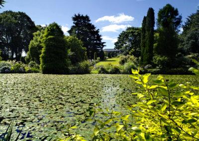 See im Altamont Garten, County Carlow