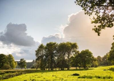 Landschaft im County Monaghan