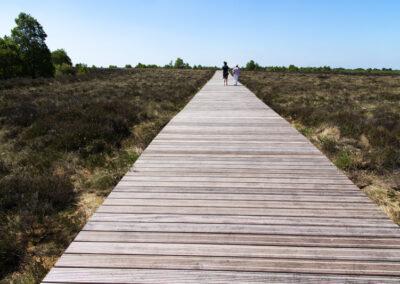 Der Bohlenweg Corlea Trackway durch das Moor im County Longford