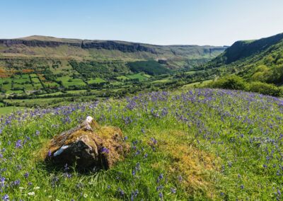 Blick über Glenariff Glen, County Antrim