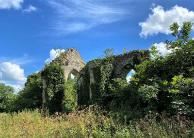 Grey Abbey im County Kildare