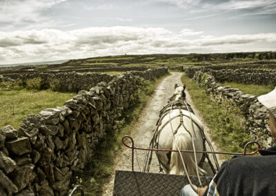 Pferdekutsche auf Inis Mor / Aran Islands, County Galway
