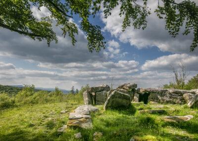 Steinkreis im Burren Park, County Cavan